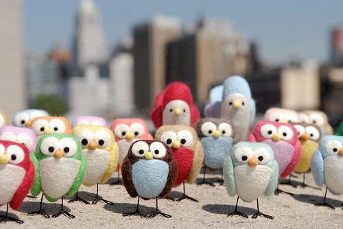 Citybirds