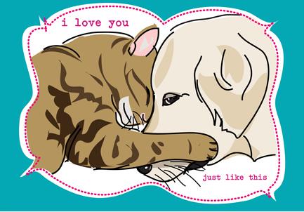 Cat & Dog Cuddle